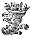 000p134-ornament-cornucopia-q100-842x1019